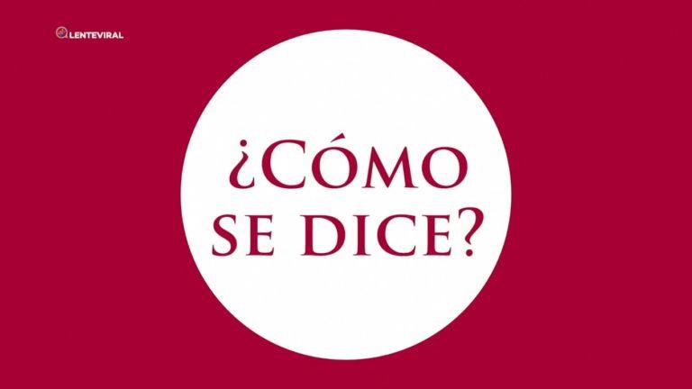 Presentación Campaña del Idioma ¿Cómo se dice?
